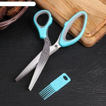Ножницы кухонные для зелени «шеф», 21 см, цвет микс