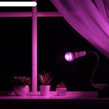 Светильник для растений 7 вт, 5 мкмоль/с, гибкая ножка 30 см, выкл на корп