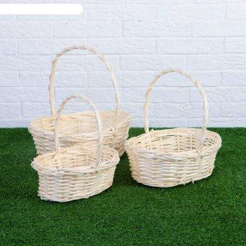 Набор корзин плетёных, ива, 3 шт., овальные, белые, большие
