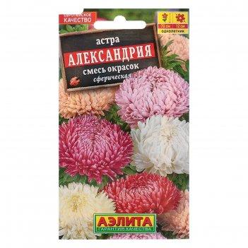 Семена цветов астра александрия, смесь окрасок, о, 0,2 г