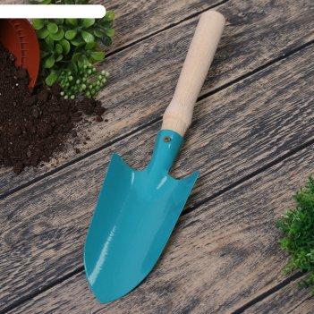 Совок посадочный, длина 36 см, ширина 8.5 см, деревянная ручка