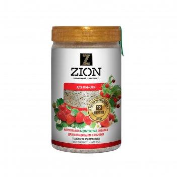 Ионитный субстрат zion для выращивания клубники, 700г.