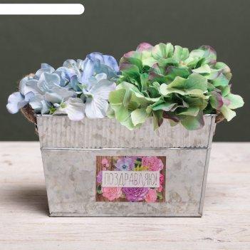 Металлическое кашпо для цветов «поздравляю!», 20 х 12 х 12 см