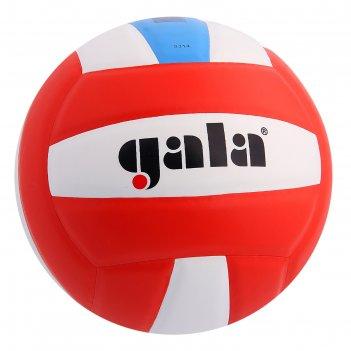 Мяч волейбольный gala school foam colour, р.5, бело-голубо-красный