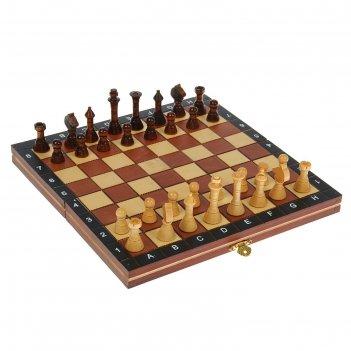 Игра настольная шахматы, доска и фигуры дерево, 27х27 см
