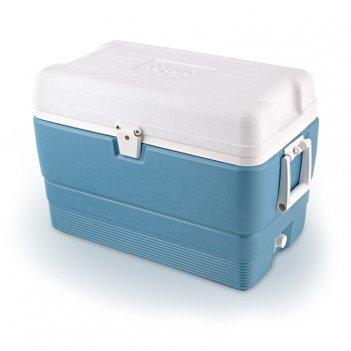 Изотермический пластиковый контейнер igloo maxcold 50