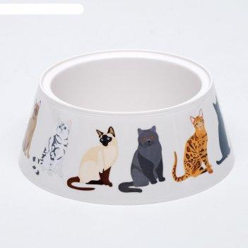 Миска cats, 0,7 л, бежевый