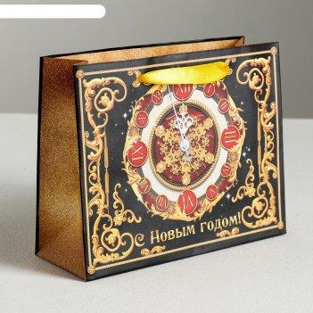 Пакет подарочный ламинированный горизонтальный «новогодние часы», s 15 x 1