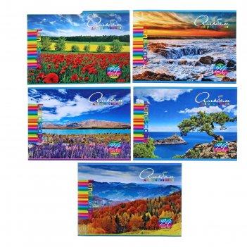 Альбом для рисования а4, 24 листа на скрепке яркие краски природы тиснение
