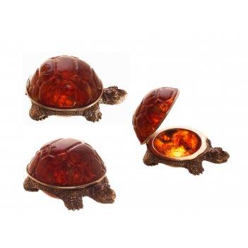 Шкатулка черепаха из янтаря