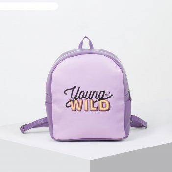 Рюкзак молодёжный, отдел на молнии, цвет сиреневый