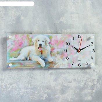 Часы настенные, серия: животный мир, белый ретривер, 20х50 см