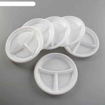 Набор тарелок трехсекционных 22 см все на пикник, 6 шт