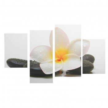 Модульная картина на подрамнике белый цветок у камней, 2 — 30x45, 1 — 29,5