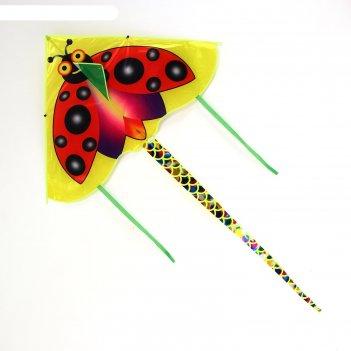 Воздушный змей насекомые с леской, виды микс