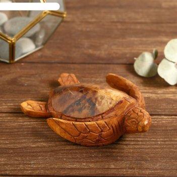 Сувенир из дерева маленькая черепашка 16х12х4 см