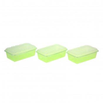 Набор контейнеров для заморозки zip, 3 шт, киви