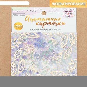 Набор ацетатных карточек для скрапбукинга «цветочная галерея», 10 x 11 см