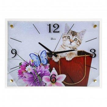 Часы настенные, серия: животный мир, котенок, 40х56  см, микс