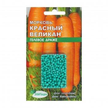 Семена морковь красный великан, драже гелевое