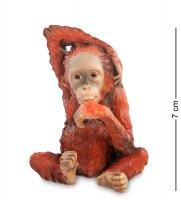 Ws-761 статуэтка детеныш орангутанга