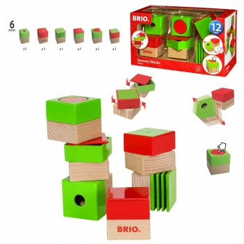 Brio развивающие кубики (6 элементов) 15х10х5 см., кор. 25х14х10 см.