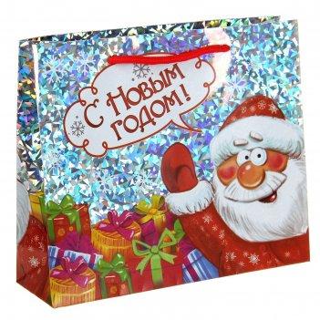 Пакет подарочный голография дед мороз, 23 х27 см