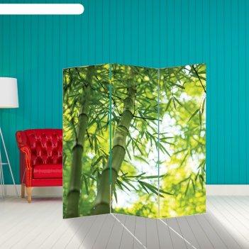Ширма бамбук. декор 3 150 x 160 см