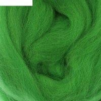 Шерсть для валяния 100% тонкая шерсть 50гр (434 зелёный)