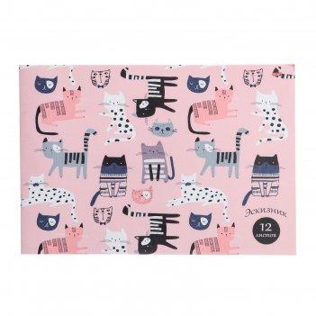 Эскизник а4, 12 листов котики на розовом-1, бумажная обложка, блок офсет