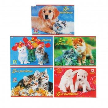 Альбом для рисования а4, 12 листов на скрепке верные друзья 5 видов микс