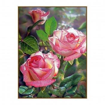 Алмазная мозаика королева сада, 34 цвета