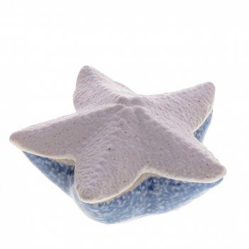 Шкатулка морская звезда, l10 w9,5 h5 см
