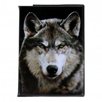 Обложка для автодокументов волк