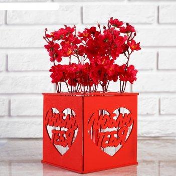 Ящик-кашпо подарочный с 9 колбами люблю тебя, красный