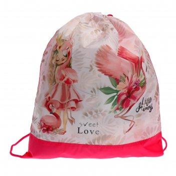 Мешок для обуви, 420 х 340 мм, сдс-3, «принцесса и фламинго»