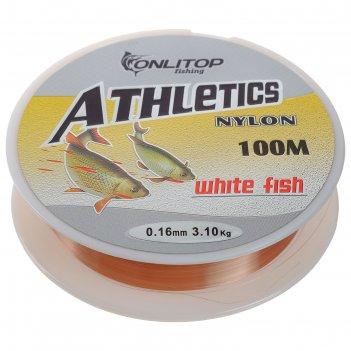 Леска white fish, d=0,16 мм, 100 м