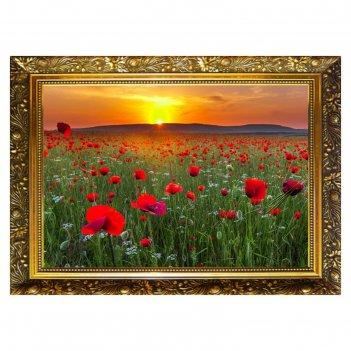 Алмазная мозаика маковое поле  29,5x20,5см, 25 цветов nr-3