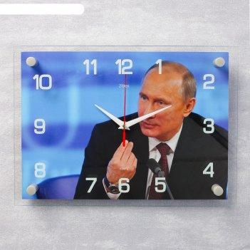 Часы настенные, серия: люди, в.в. путин, 25х35  см, микс