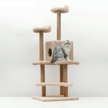 Комплекс для кошек лестница, 56 х 52 х 140 см, ковролин, джут, микс цветов