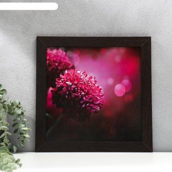 Постер мдф красные цветы 30х30 см, венге