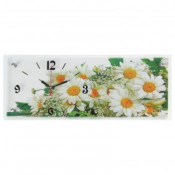 Часы настенные, серия: цветы, ромашки, 20х50  см, микс