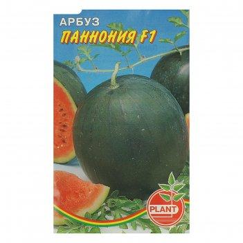 Семена арбуз паннония, 10 шт