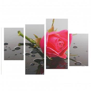 Модульная картина на подрамнике роза с каплями, 2 — 30x45, 1 — 29,5x69, 1
