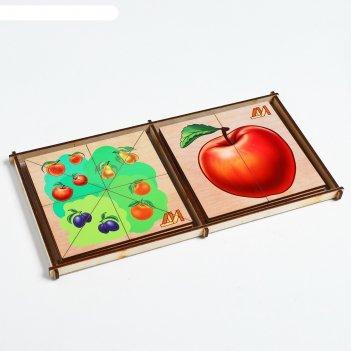 Пазл сложи картинку. фрукты