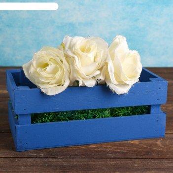 Ящик-кашпо двушка, большой, синее, 24,5х13,5х9см