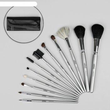 Набор кистей для макияжа, 12 предметов, чехол на кнопке, цвет серебряный