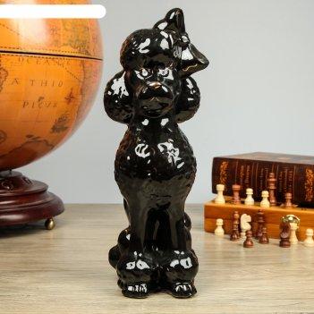 Фигура садовая собака пудель, глянец, чёрный