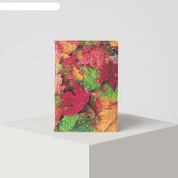 Обложка для паспорта 9,5*0,5*13,5см, осень, оранжевый