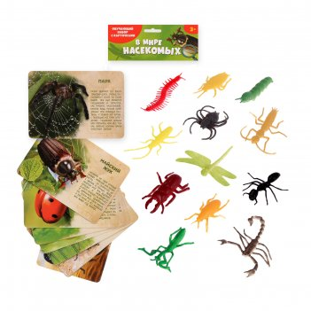 Набор животных с обучающими карточками в мире насекомых, 12 животных, 12 к